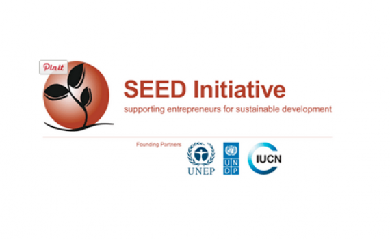 SEED awards logo